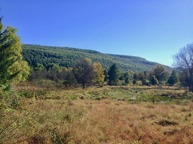 Tentrr Signature Site - Clove Mountain Meadow, vacation rental in New Paltz
