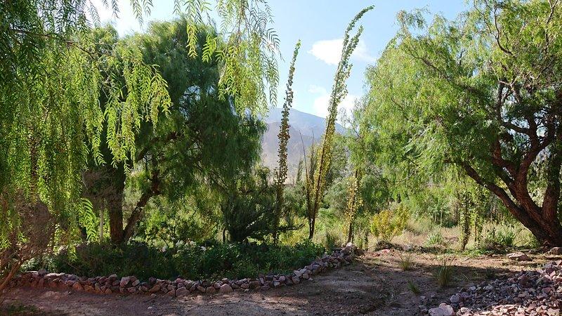 Cabaña CZ, La Quinta de María, Tilcara, alquiler de vacaciones en Tilcara