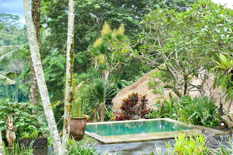 Luxurious private villa in lush Ubud countryside - next to The Hanging Gardens, holiday rental in Pelaga