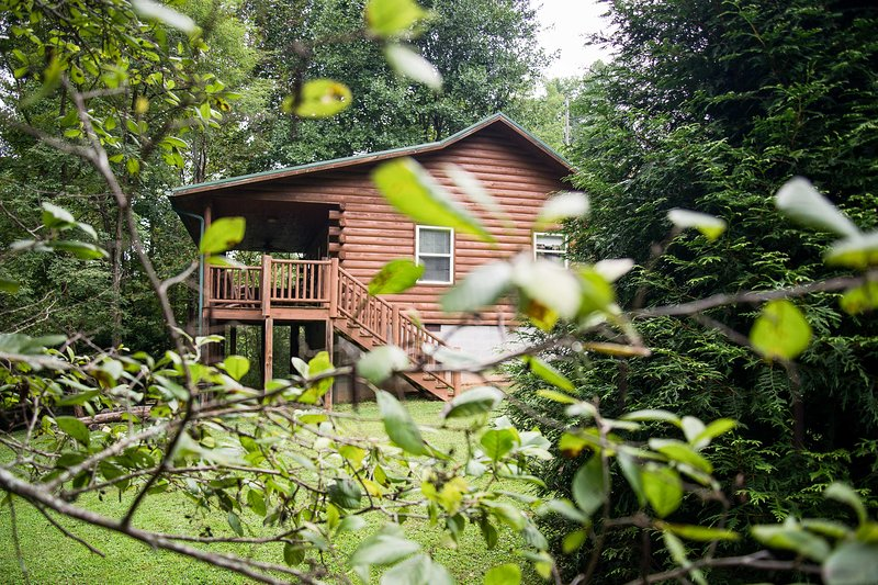Your cabin awaits in a beautifully wooded area.