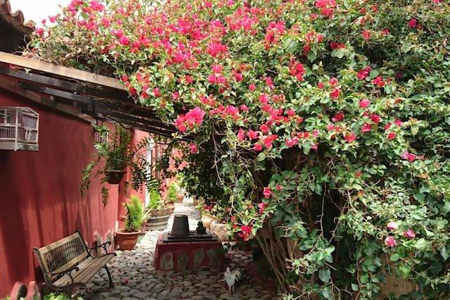 Nice house with garden & Wifi, location de vacances à Los Gavilanes