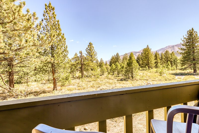 Cozy condo w/ a furnished balcony, shared pool, & large Jacuzzi Chalet in Mammoth Lakes