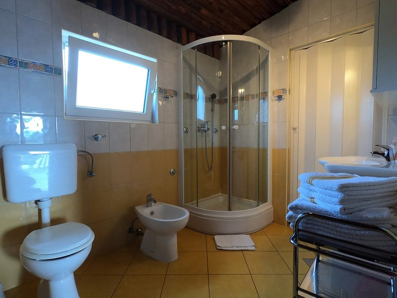 A1(4+2): bathroom with toilet