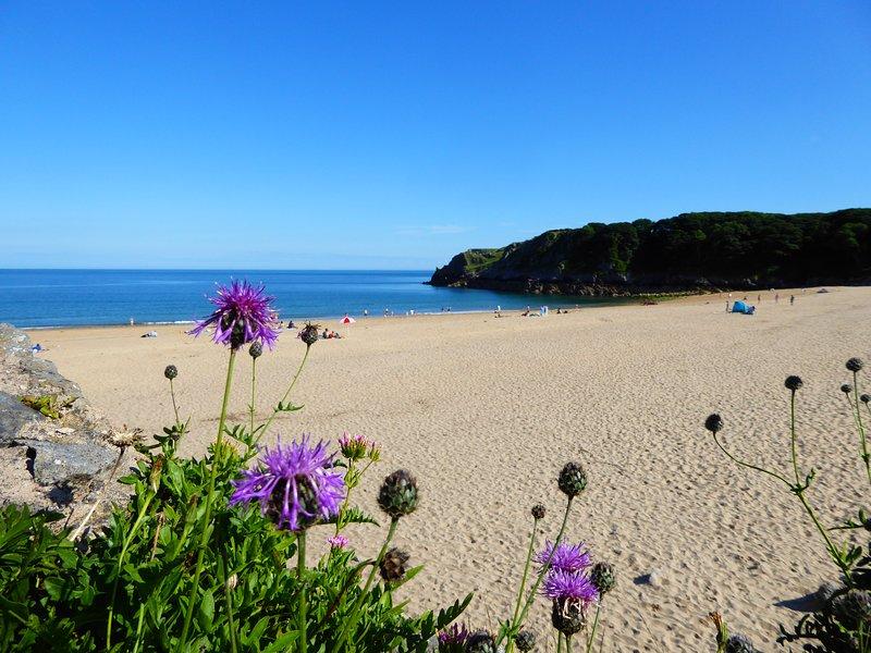 Barafundle Bay est l'une de nos plages primées.