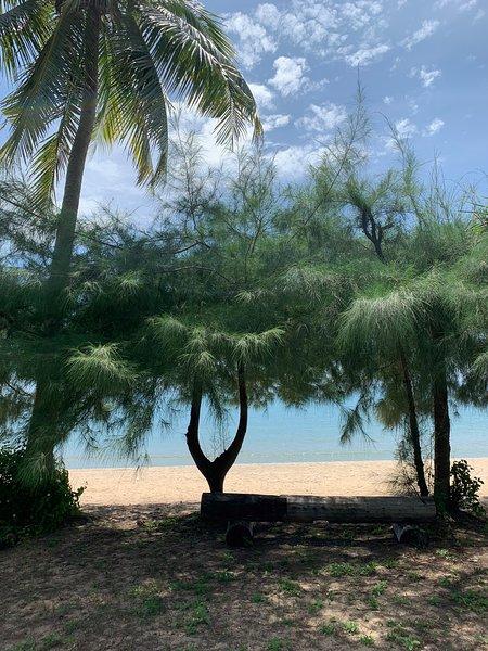Giardino alla spiaggia
