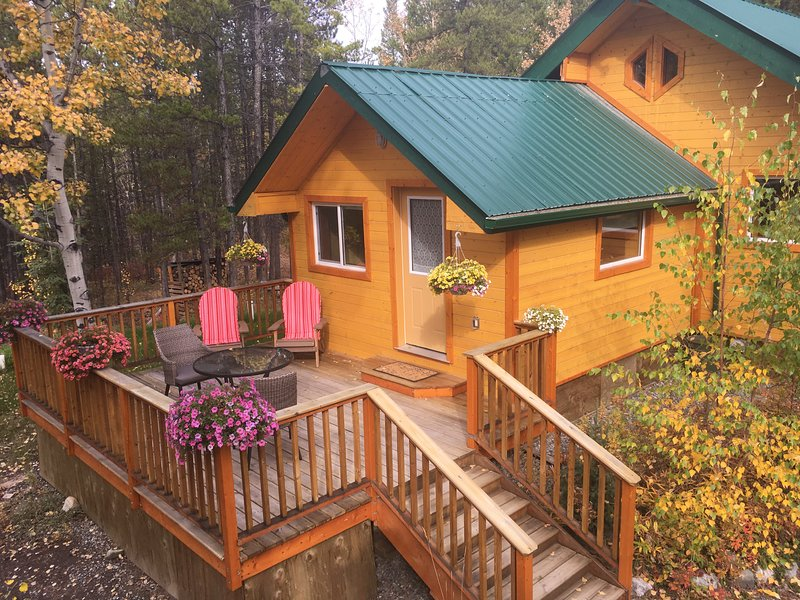 Cozy little house at hot springs, vacation rental in Whitehorse