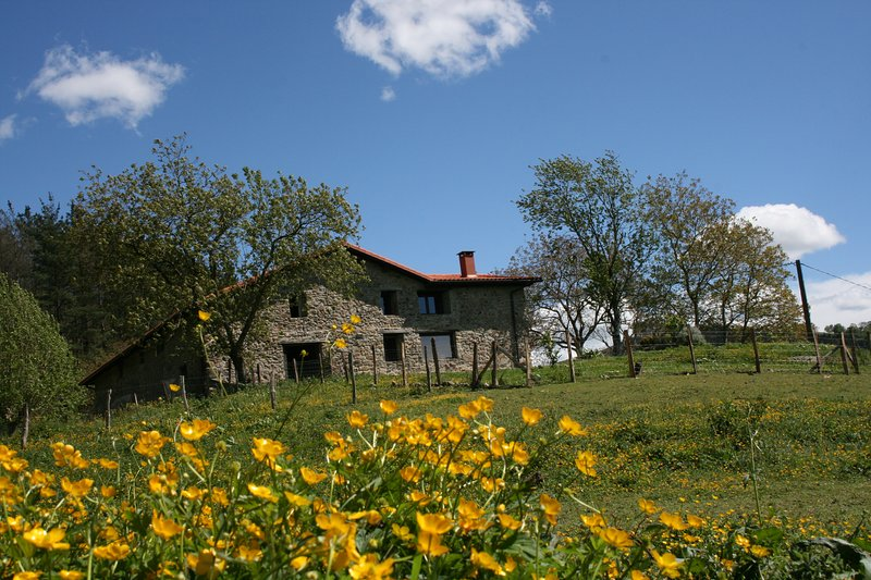 Casa Rural Abatetxe, holiday rental in Mutriku