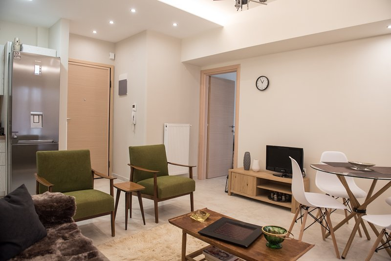 halu! #Cassandra: Comfortable Centre Apartment, holiday rental in Ampelokipoi