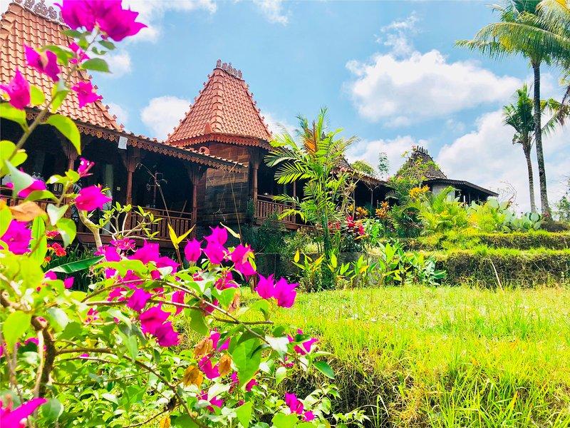 Villa Neyang - Hideaway Relax in the Rice field farm stay, location de vacances à Kedewatan