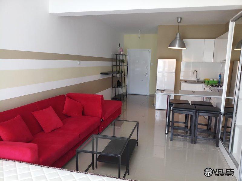 Luxury studio near the sea, with access to the swimming pool Marius 5, holiday rental in Trikomo