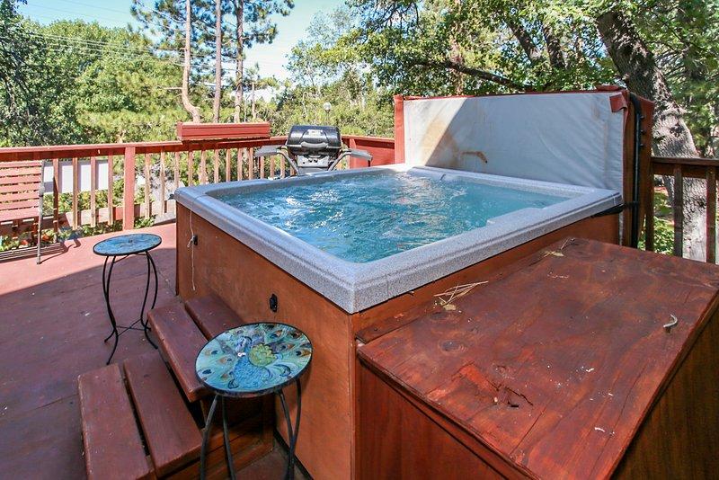 Knickerbocker Retreat Ultra Spacious Downtown Village Chalet / Hot Tub, location de vacances à Cherry Valley