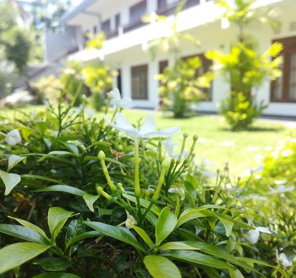 Mirissa Bay Garden, holiday rental in Kamburugamuwa