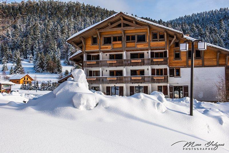 G7. Appartement premium 3/5p 42m² 1ch terrasse, vacation rental in Wildenstein