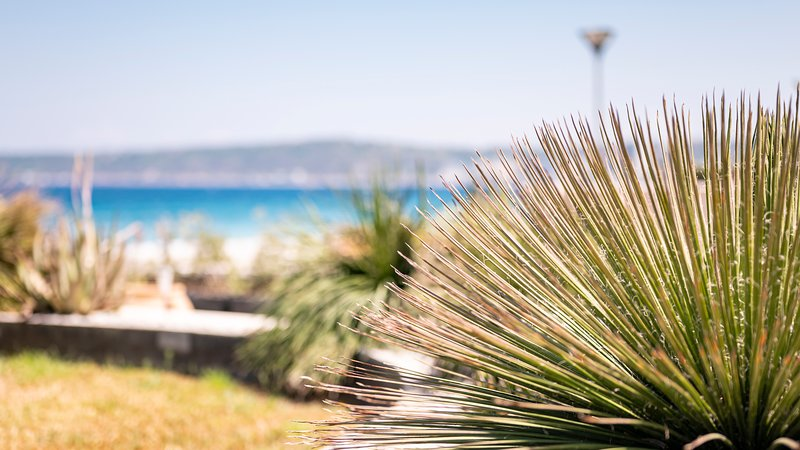 Villa Sea Breeze is an exquisite villa on the beachfront, holiday rental in Ialyssos
