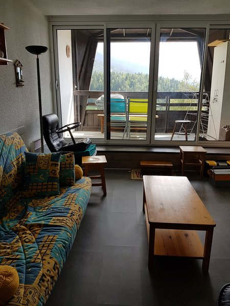 Studio - 100 m from the slopes, holiday rental in Le Gua