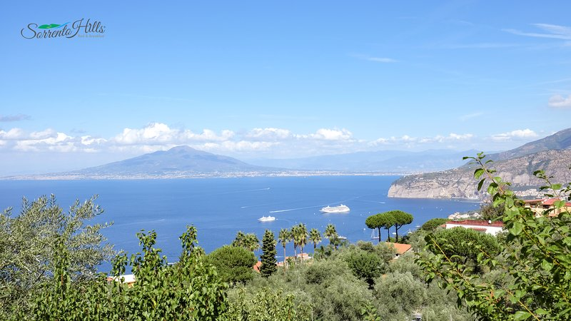 Panorama från terrassen i Sorrento Hills