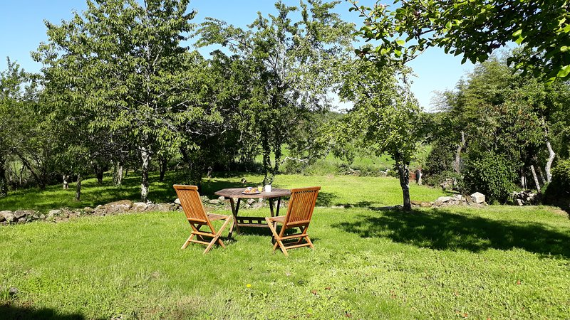 Stone gite with garden in tiny hamlet between Bellac & Chateauponsac, sleeps 4, vacation rental in Nantiat