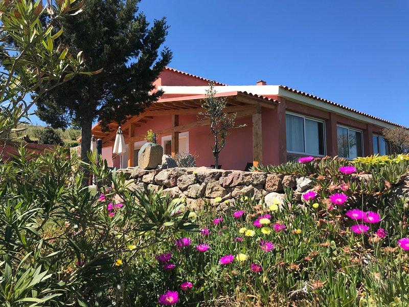 Stazzo la Foci : Monolocale  vista mare, holiday rental in Aglientu
