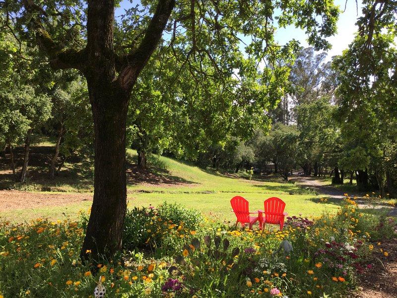 AMAZING cottage! Perfectly located in Santa Rosa, location de vacances à Santa Rosa