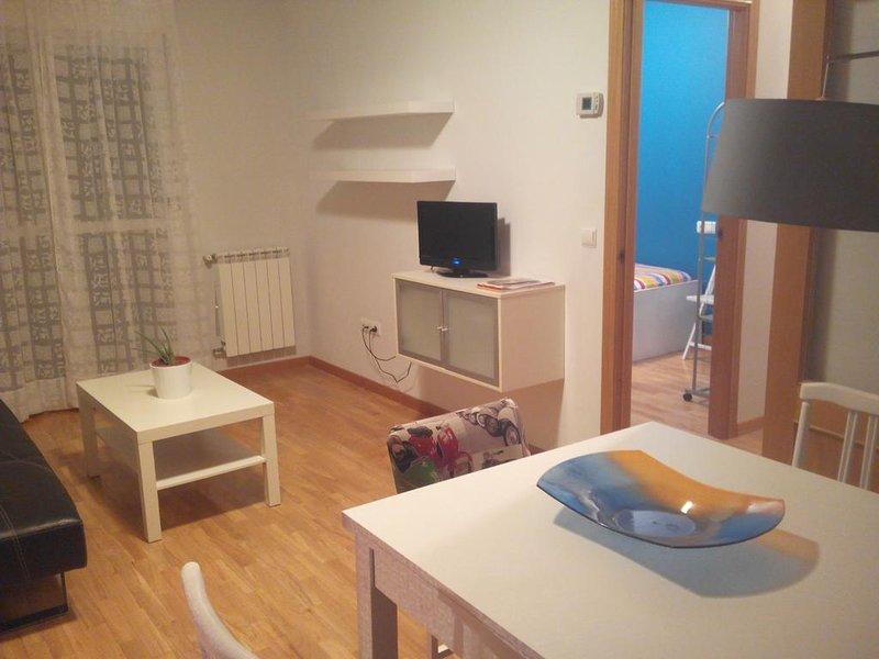 Beautiful apartment with balcony, vacation rental in Zamora