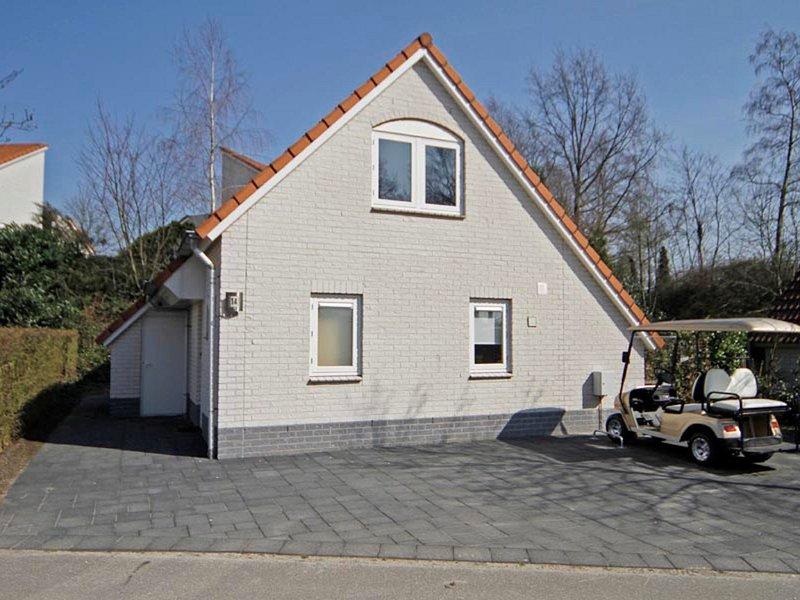 Luxurious villa with cart, whirlpool, jacuzzi, in green area, alquiler vacacional en Swolgen