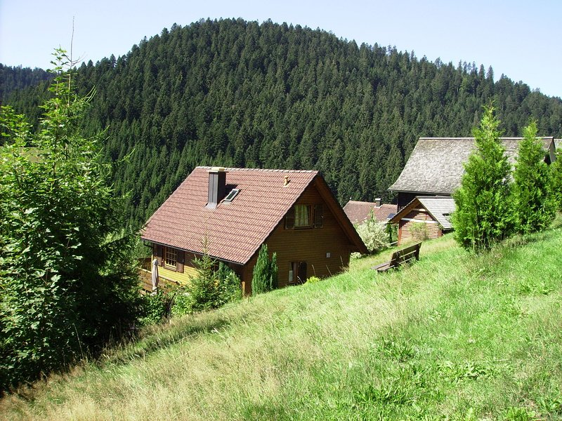 Quaint Holiday Home in Reinerzau with Sauna, aluguéis de temporada em Bad Rippoldsau