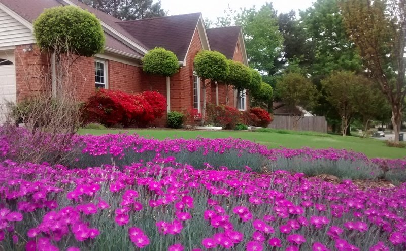 Peaceful Getaway, vacation rental in Southaven
