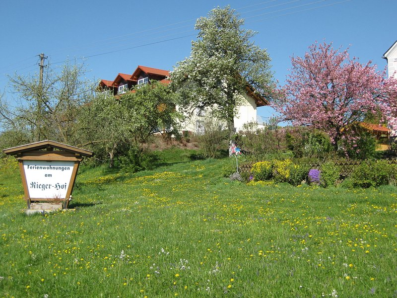 Beautiful apartment in Lower Bavaria on a holiday farm in a quiet location, vacation rental in Eggenfelden