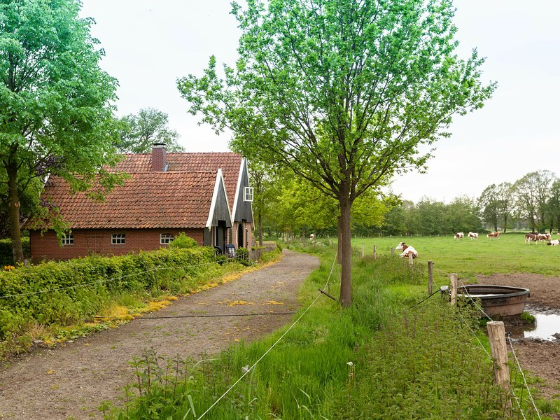 Cozy Farmhouse In Enschede with Terrace, holiday rental in Haaksbergen