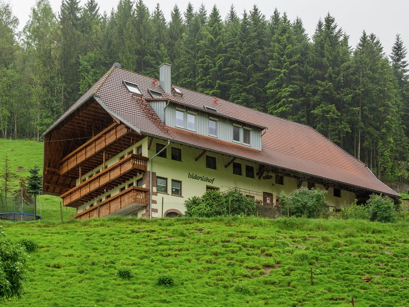 Luxurious Holiday Home near Forest in Mühlenbach, vacation rental in Hofstetten