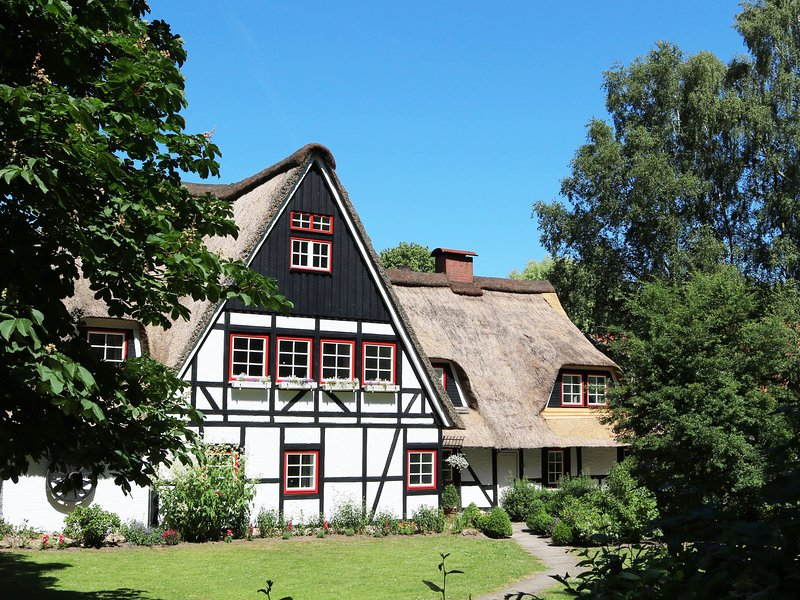 Thatched cottage with 6 apartments, group room, sauna, garden, playground, vacation rental in Gromitz