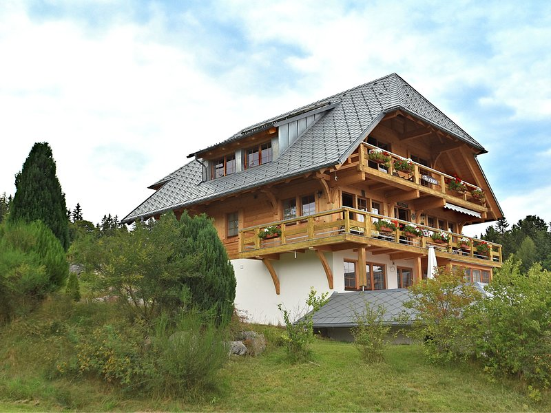 Comfortable apartment with large roof terrace in Dachsberg-Urberg, aluguéis de temporada em Dachsberg