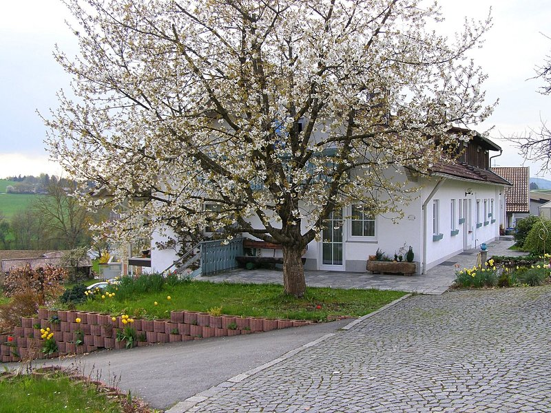 Modern Apartment in Goggersreut with Terrace, holiday rental in Saldenburg