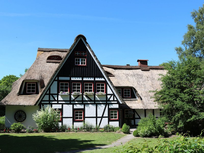 3 apartments in thatched cottage with outdoor sauna, large garden, playground, vacation rental in Gromitz