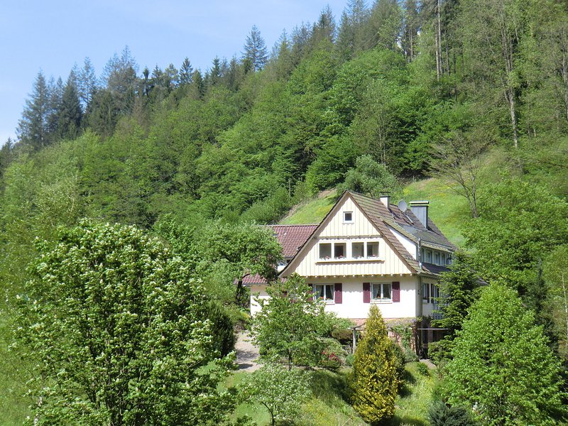 Apartment in a mansion in the Black Forest in a quiet and sunny location, vakantiewoning in Durbach