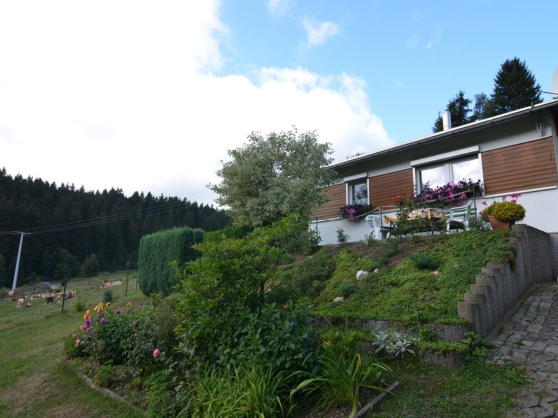 Detached holiday home in Thuringia with a terrific view from the balcony, location de vacances à Lauscha