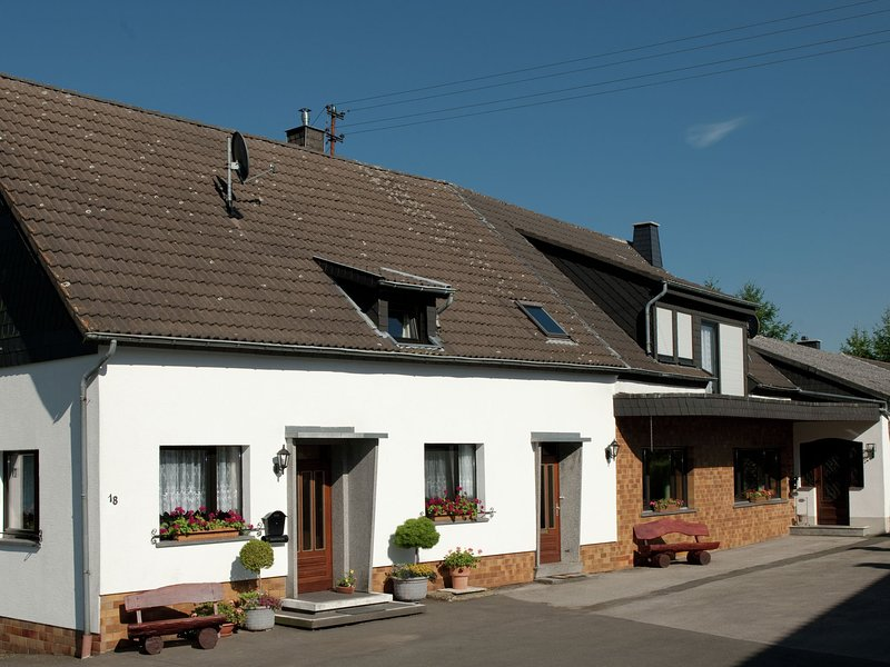 Modern Holiday Home in Hellenthal with Sauna, holiday rental in Hellenthal