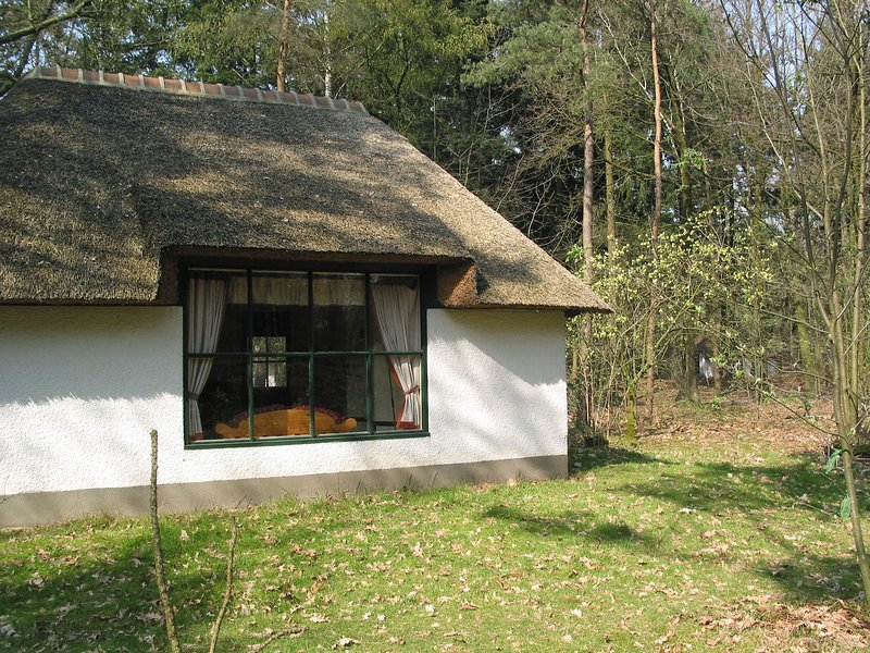 Romantic bungalow with dishwasher, surrounded by nature, holiday rental in Nijmegen
