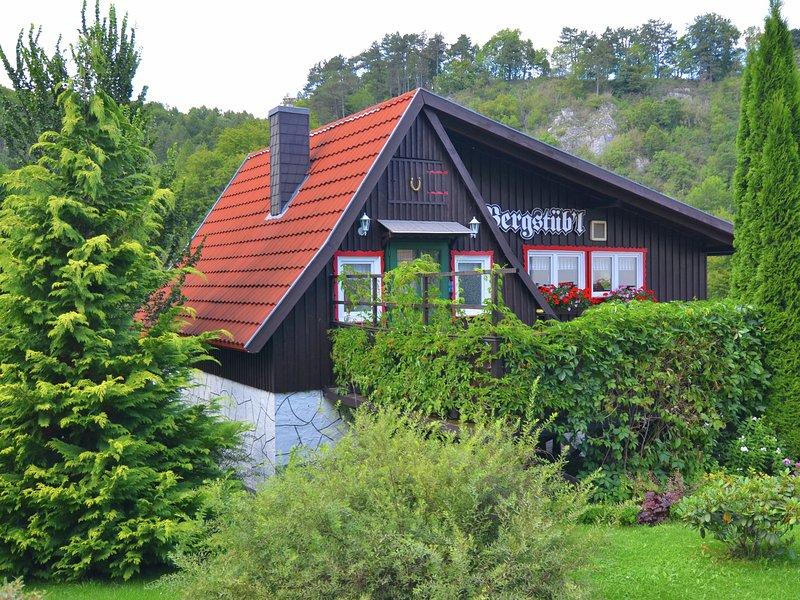 Quaint Holiday Home in Elbingerode near Forest, vacation rental in Rubeland