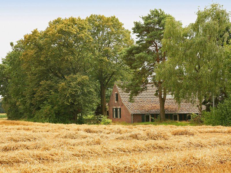 Spacious Farmhouse near Forest in Stramproy, vacation rental in Nederweert
