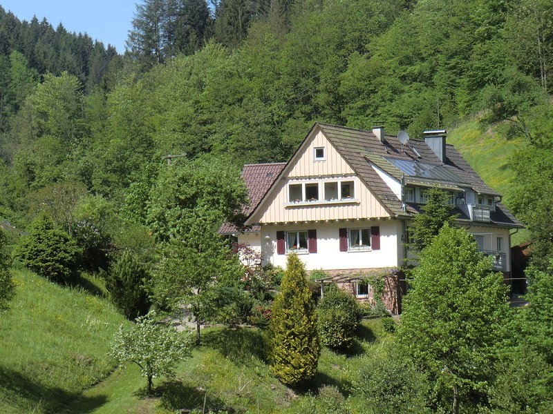 Idyllic holiday home in a mansion with garden, in the beautiful Black Forest, vakantiewoning in Durbach