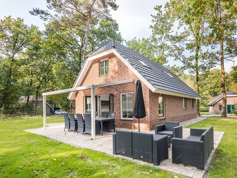 Luxurious holidayhome with whirlpool and sunshower in nature, vacation rental in Zwiggelte