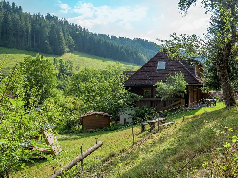 Majestic Farmhouse in Buchenbach near Ski Area, holiday rental in Sankt Margen