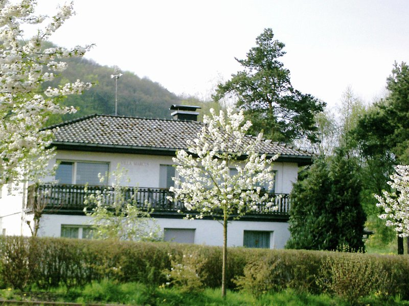 Large apartment on the Diemelsee with fireplace and balcony, holiday rental in Heringhausen