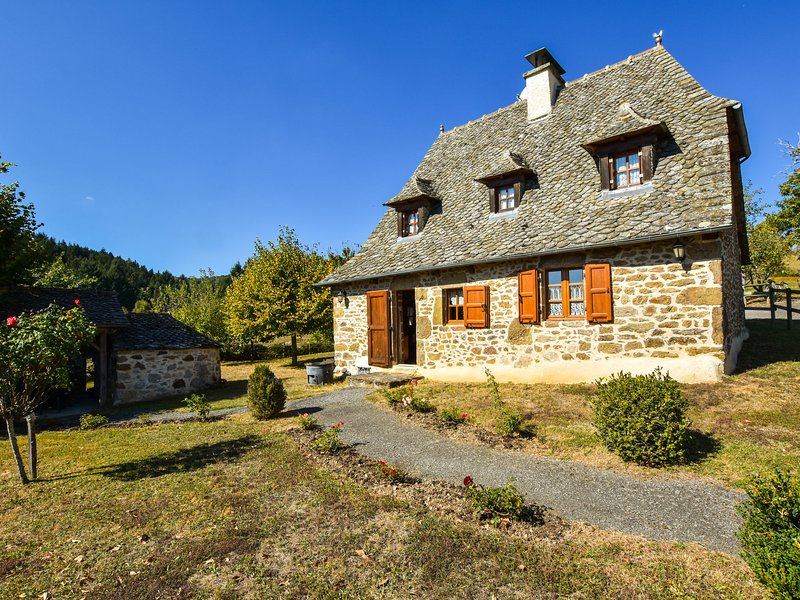 Heritage Holiday Home in Auvergne with Terrace, vacation rental in Junhac