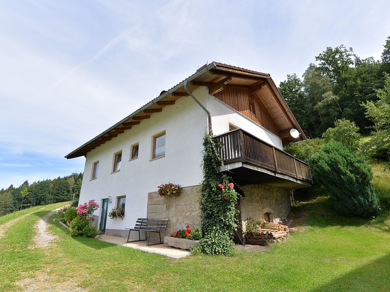 Beautiful holiday home on a farm in the Bavarian Forest with a great view., holiday rental in Viechtach