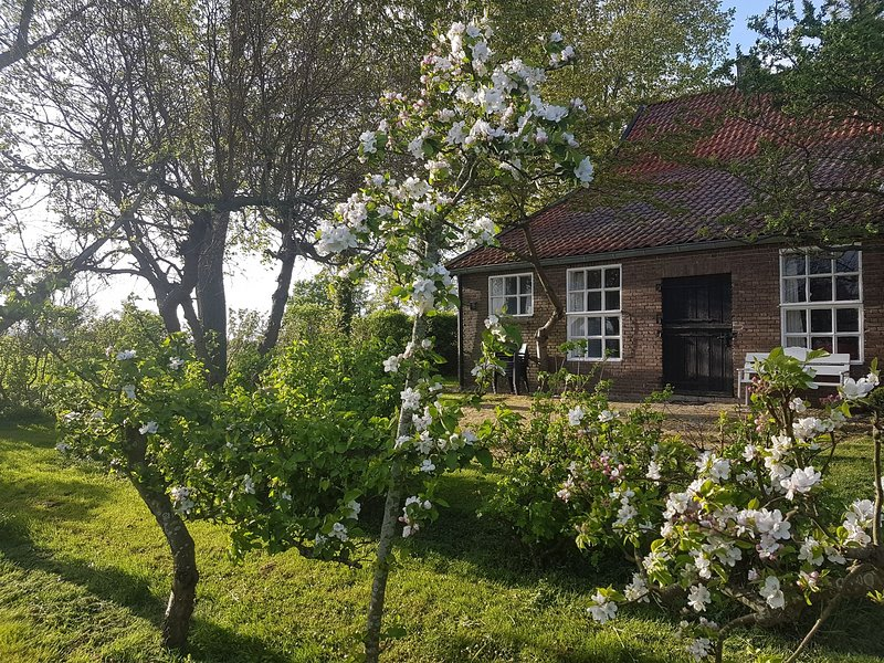 Beautiful Farmhouse in Veere with Open Fireplace, holiday rental in Middelburg