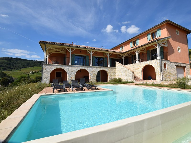Villa surrounded by vineyards, with private swimming pool, sauna and cinema, holiday rental in Beaujeu