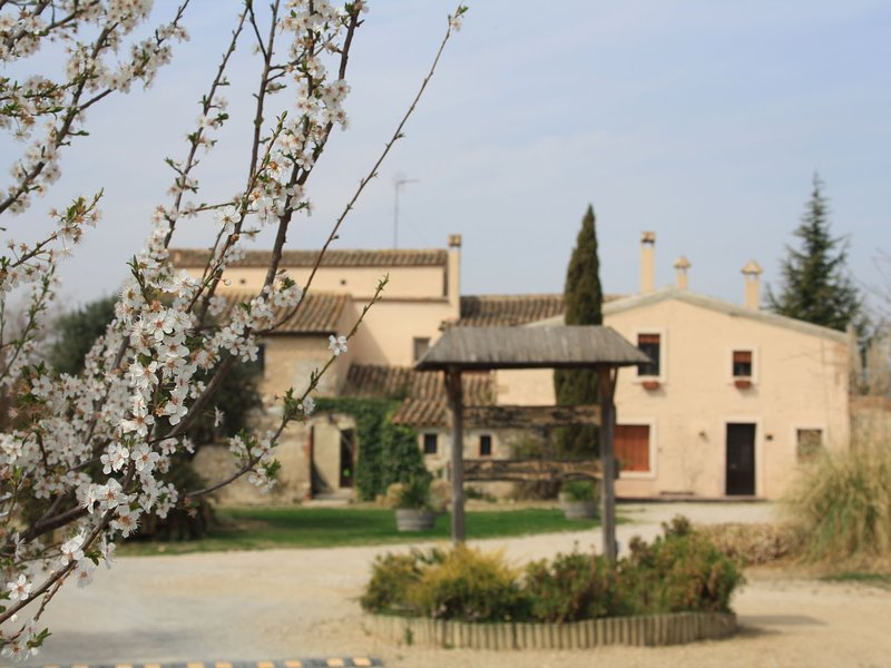 Cozy Cottage in Subirats with Swimming Pool, location de vacances à Els Hostalets de Pierola