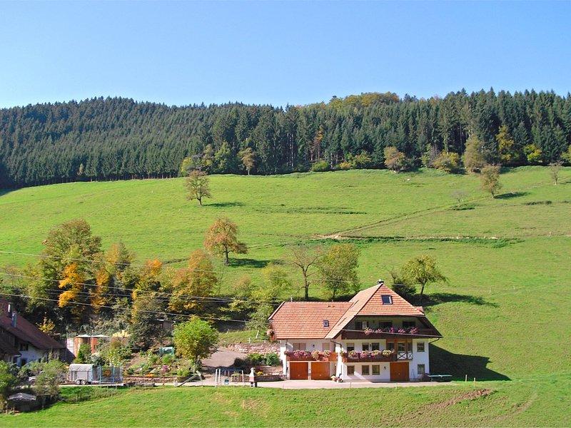 Boutique Apartment in Salmensbach near River, location de vacances à Schweighausen